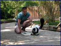 Varis F�tterung, �Zoo