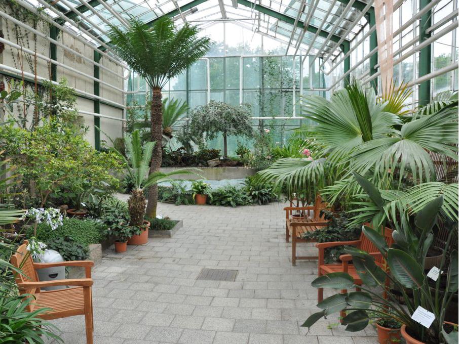 Parks Und Garten Touristische Informationen Uber Magdeburg