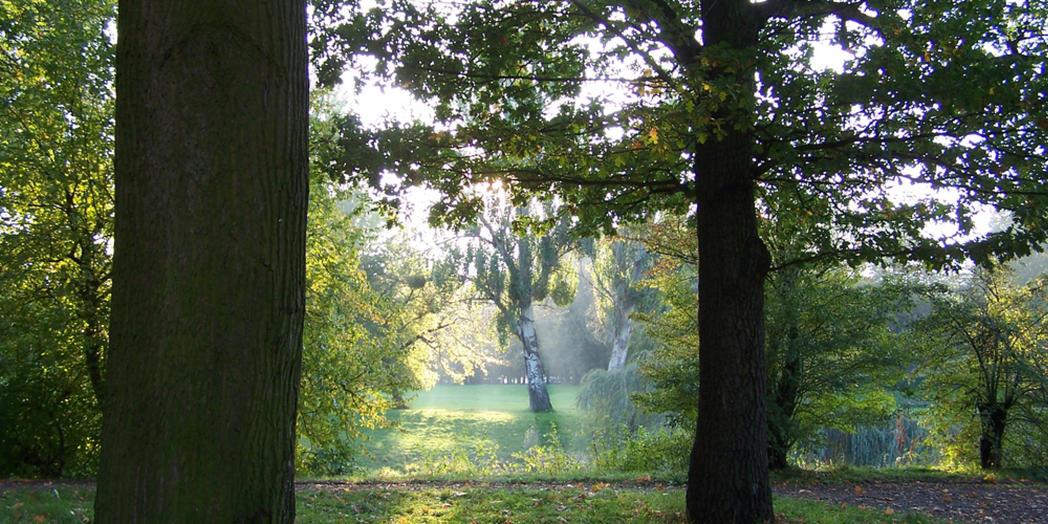 1. Stadtpark Rothehorn © MMKT GmbH